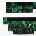 Garden (detail) 2012, digital print on paper