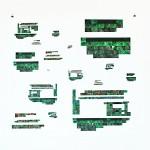 Garden, 2012, 50″ x 44″, digital print on paper
